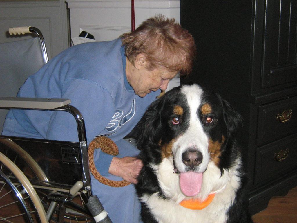 Zoothérapie: quand animal et personnes âgées font bon ménage