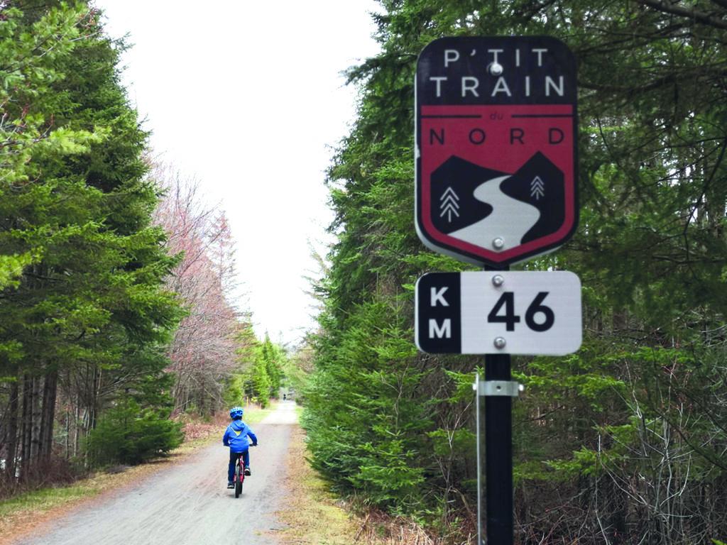 La poussière de pierre sur Le P'tit Train du Nord ne sera bientôt plus qu'un souvenir entre Ste-Agathe et Val-Morin. (Photo L'info du Nord – Marilou Séguin)
