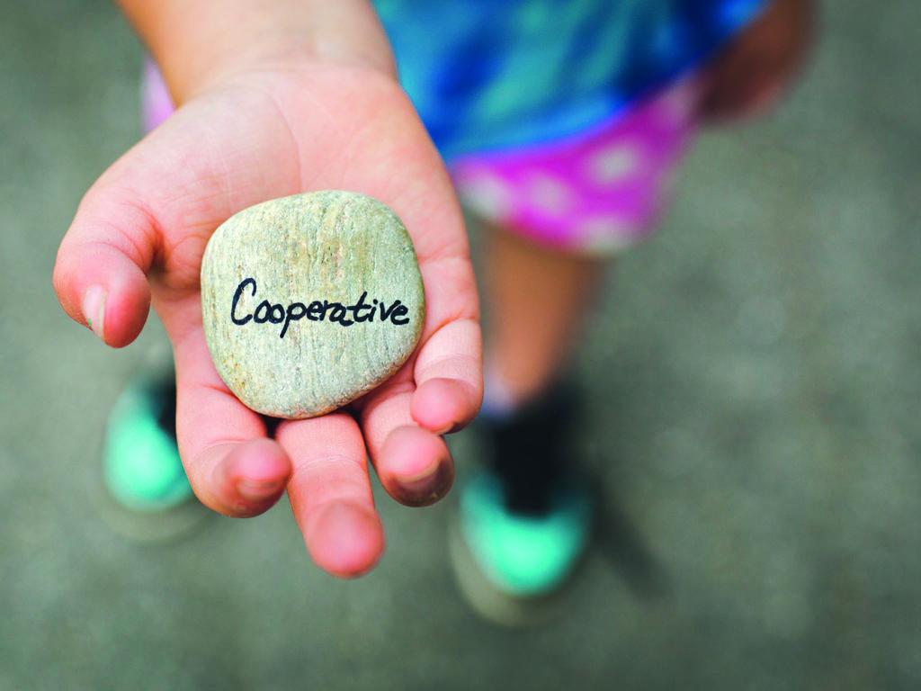 Les coopératives, c'est plus que les caisses populaires!