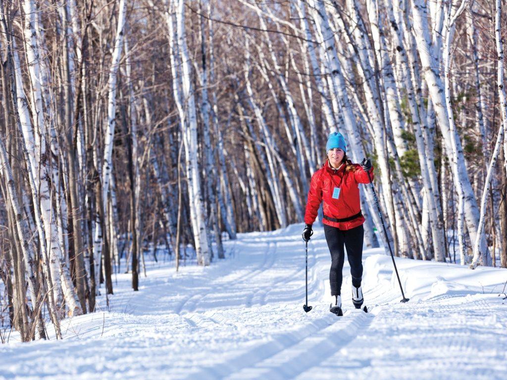 Du plein air pour les Québécois cet hiver